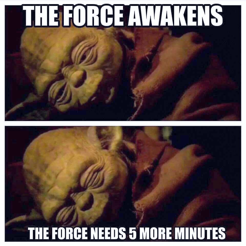 Yoda is ready, wait no 5 more minutes rest